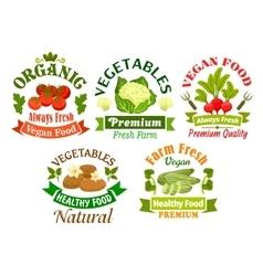 Organic vegan food emblems Vegetarian vegetables vector image vector image