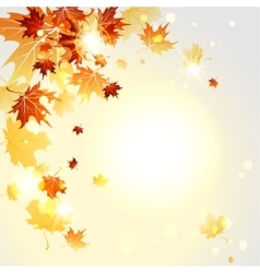Autumn midday vector