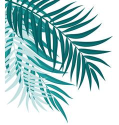 Beautifil palm tree leaf silhouette backgroun vector