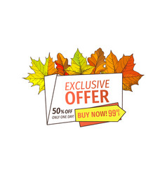 Exclusive offer only on thanksgiving special price vector