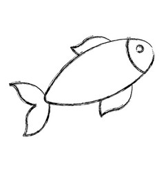 fish icon image vector image