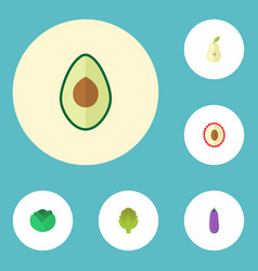 Flat icons aubergine litchi cauliflower and vector