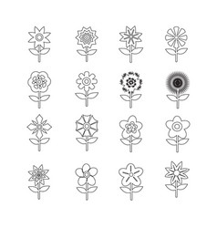 flower icon set for website vector image
