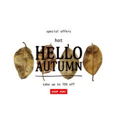 hot autumn sale vector image