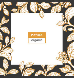template nature organic mate vector image