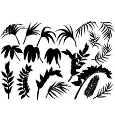tropical palm jungle plants silhouettes set vector image