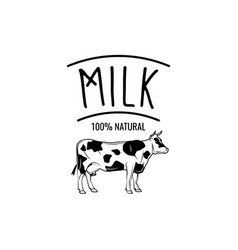 cow milk badge label isolated on white vector image vector image