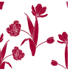 tulip bouquet hand drawn vector image
