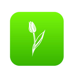 tulip icon green vector image