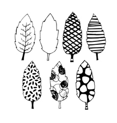 Leaves hand drawn set vector image