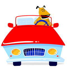 dog is driving a car in cartoon vector image