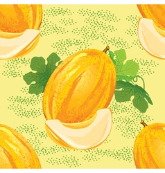 Seamless pattern of ripe melon vector
