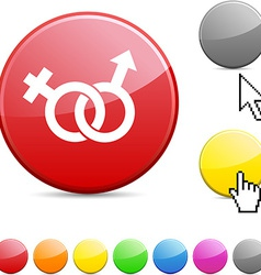 Sex glossy button vector image