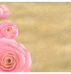 Pink Rose With Old Paper vector image vector image