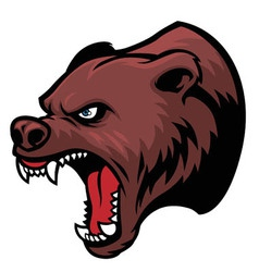 grizzly bear head vector image vector image