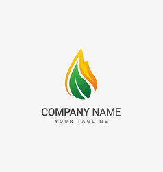 flame and leaf logo template vector image