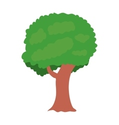 green tree plant vector image