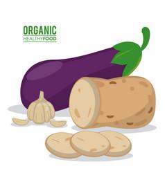 Organic healthy food eggplant garlic and potato vector
