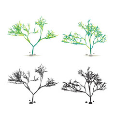 Seaweed algae hand drawn water plant with stones vector