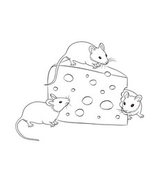 three mice with a piece cheese in contours vector image