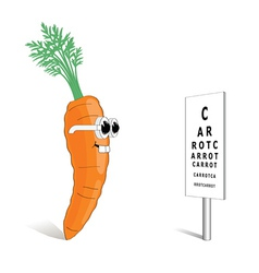 carrot for good vision vector image vector image