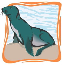 sea lion vector image vector image