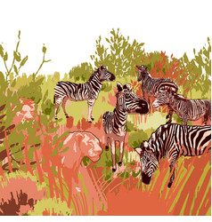 Lions hunting scene on a zebras surrounded by vector
