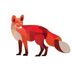 Red Fox vector