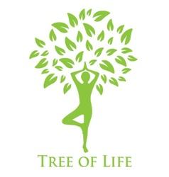 Yoga and tree life vector