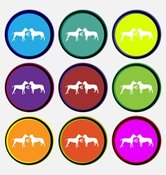 Betting on dog fighting icon sign nine multi vector