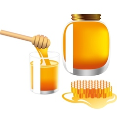 glass and bank of honey vector image