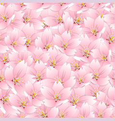 Sakura cherry blossom seamless background vector
