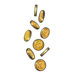 sketch falling gold coins vector image