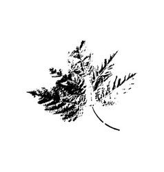 tree leave silhouette plant and nature single vector image