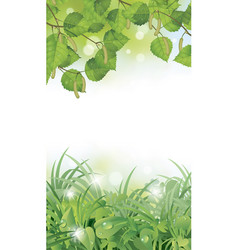 vertical frame with birch spring sunlit leaves vector image