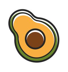 half of fresh organic avocado isolated cartoon vector image