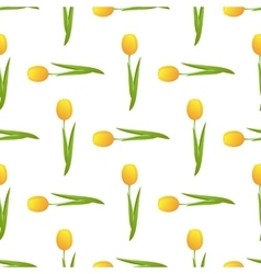 tulip seamless isolated vector image vector image