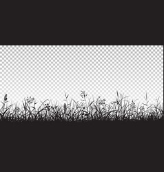 black silhouettes grass vector image