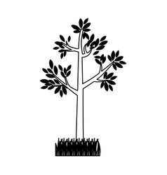 Contour silhouette tree leafy with bush vector