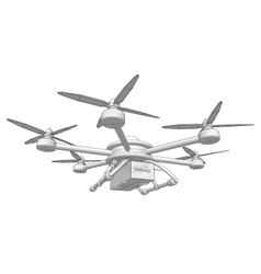 Drone delivers the goods Volumetric vector image