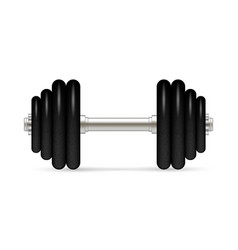 dumbbell with removable disks vector image