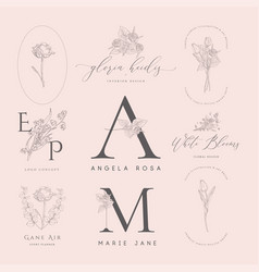 floral elements for logos frames borders vector image