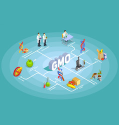 Genetically modified organisms isometric flowchart vector