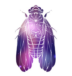 hand drawn vintage cicada with a boho pattern and vector image