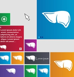 Liver icon sign buttons Modern interface website vector image