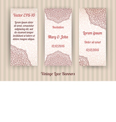 Set of 3 beautiful vintage lace invitation cards vector