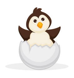 Adorable baby penguin sits in cracked egg shell vector