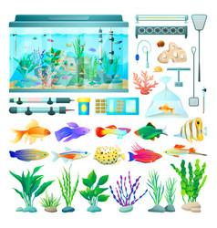 Aquarium and fish set icons vector