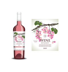 Conceptual label for rose wine vector
