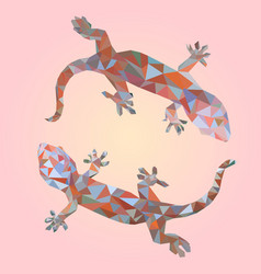 isolated low poly colorful gecko vector image